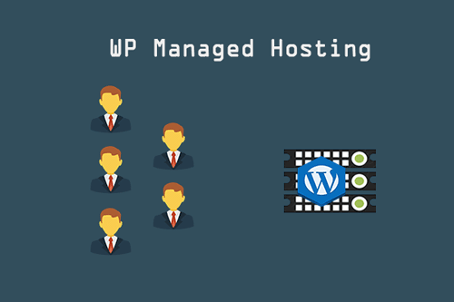 How to Choose the Best WordPress Hosting? – Complete Guide